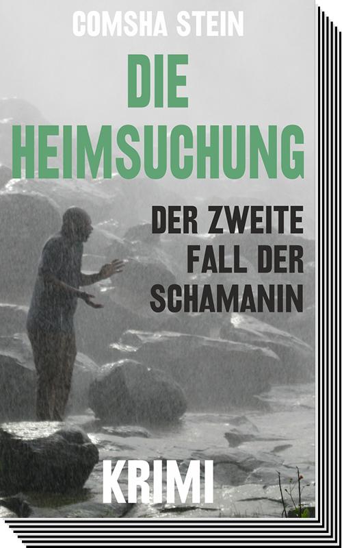 """Comsha Stein – """"Die Heimsuchung"""" Buchtitel"""